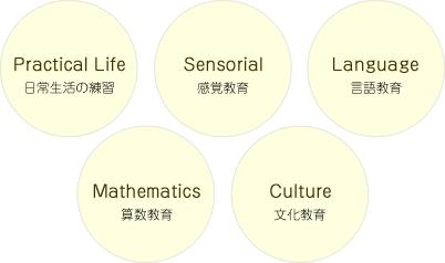 日常生活の練習/感覚教育/言語教育/算数教育/文化教育